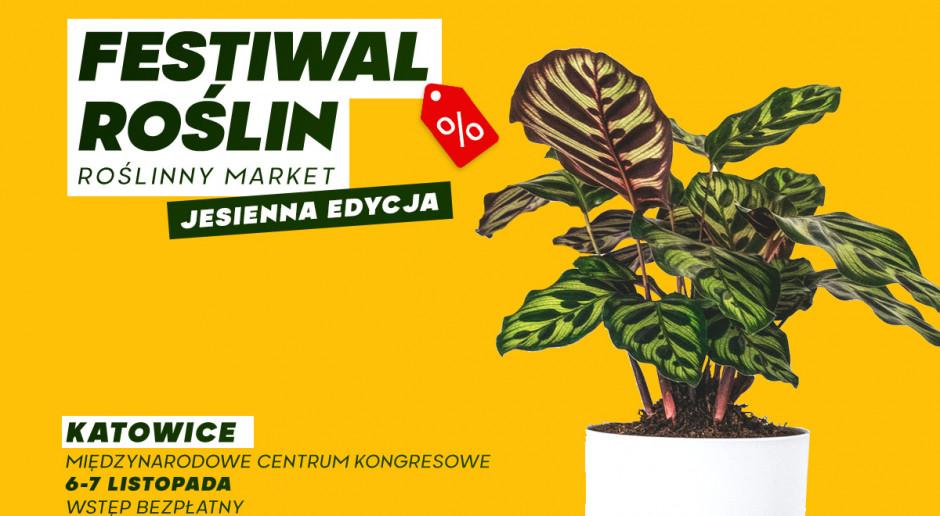 festiwal roslin plakat jesien 2021 katowice 1200x800px.jpg